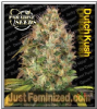 Paradise Dutch Kush Female 5 Marijuana Seeds